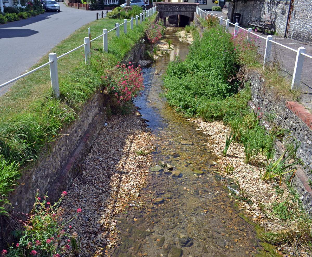 East Meon River Banks